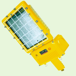 I.1.5. Lampu Jalan Street Light Explosion Proof