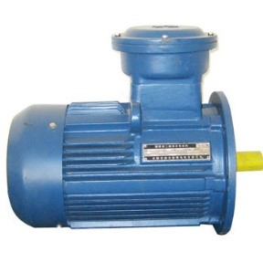 IV.1. Explosion Proof Motors